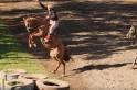 Foto: campoere.com