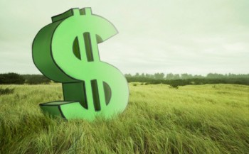 Publicada lei sobre parcelamento do Funrural e crédito rural