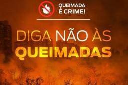 Campanha prevê fim de queimadas em vegetação