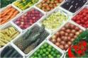 Implantação do Cadastro Nacional da Agricultura Familiar é discutido na CNA